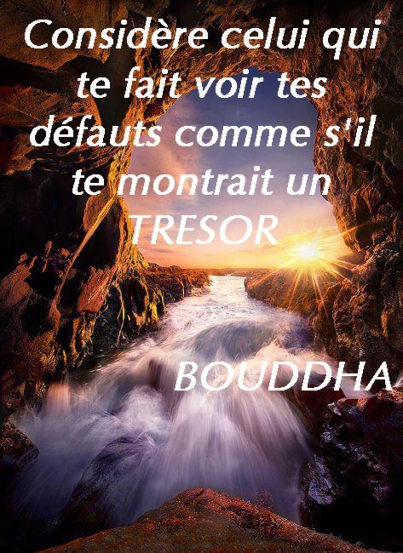 Fabuleux citations am rindienne - Page 2 NG44